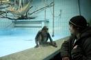 Frankfurter Zoo